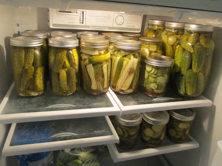 CAnning_pickles2